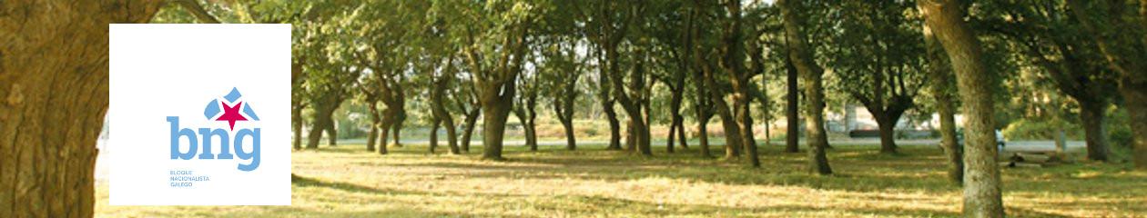 BNG Moraña